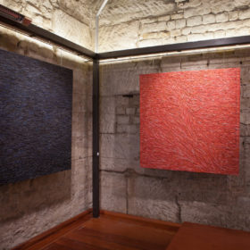 Jordi Marcet Rosa Vila-Abadal Pells Natura exposicio exposicion exhibition